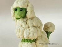 060 ovca