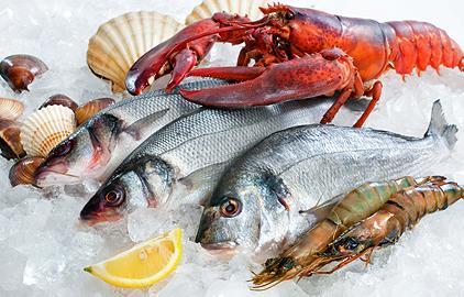 ako schudnúť s rybami a morskými plodmi