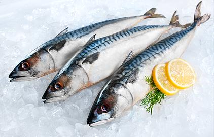 diéta podľa krvnej skupiny 0 - osožné potraviny - makrela