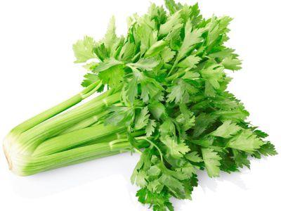 Zeler ako zelenina a jeho využitie pri príprave jedál