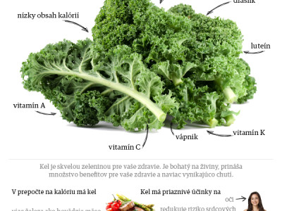 Infografika_kel