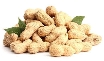 alergia na arašidy