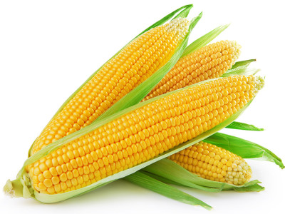 diety-a-chudnutie-kukurica